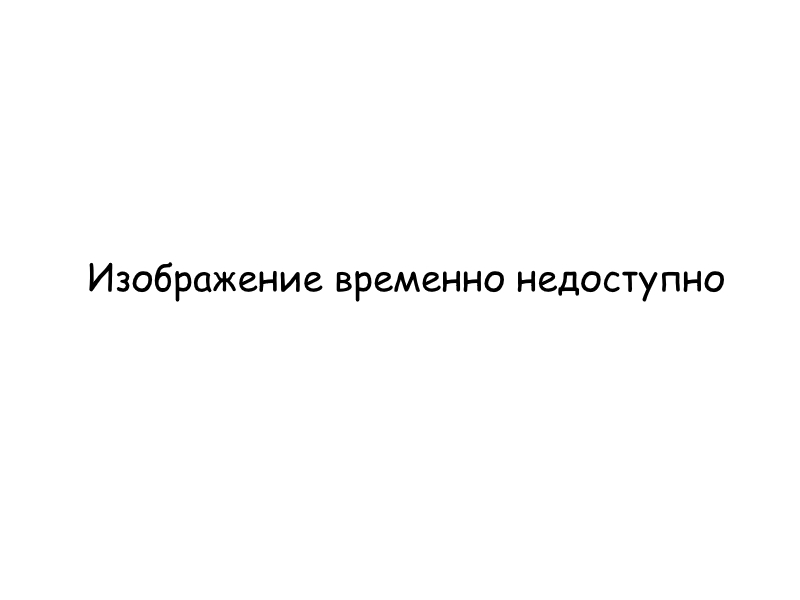 Content of the lecture: